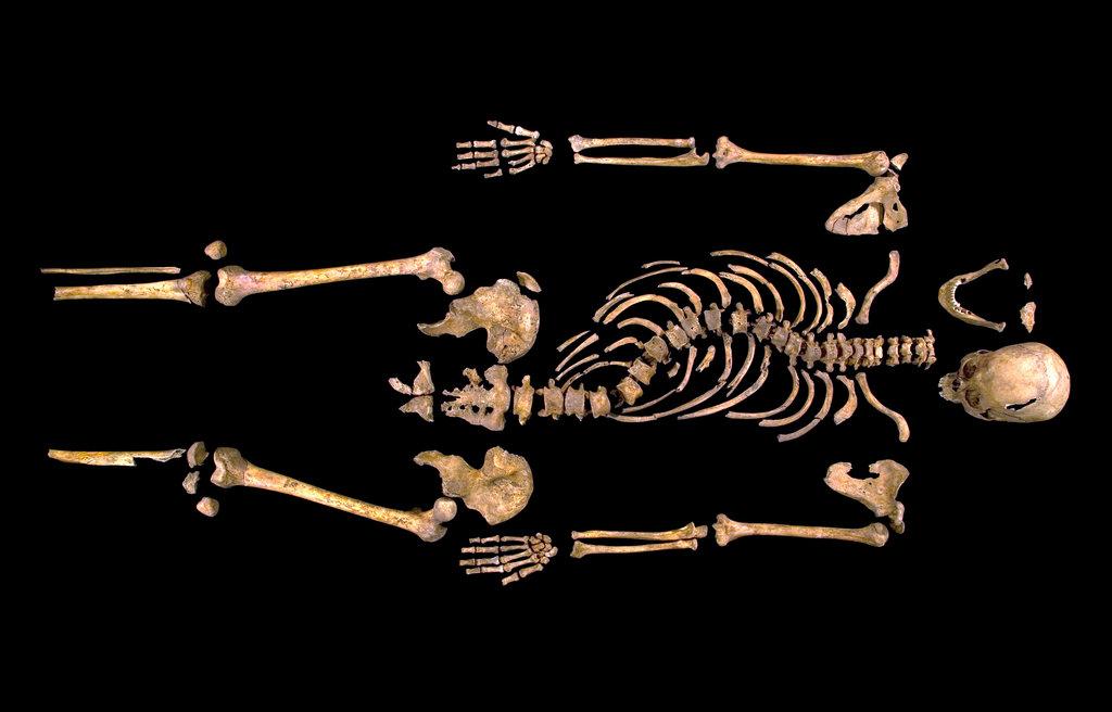 Richard III Le bizarreum