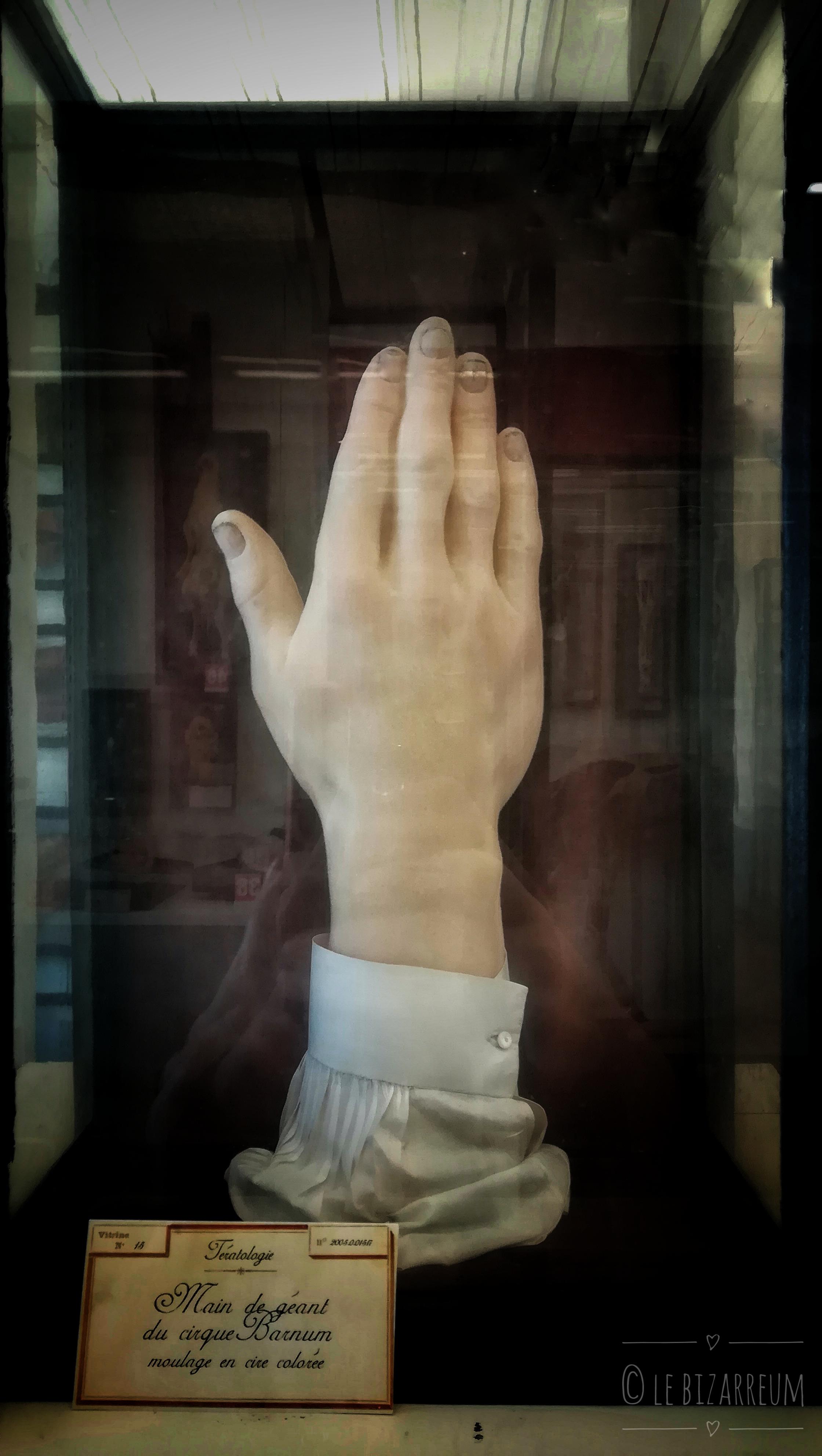 le bizarreum Fragonard