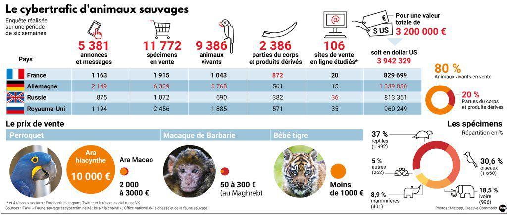 trafic animalier
